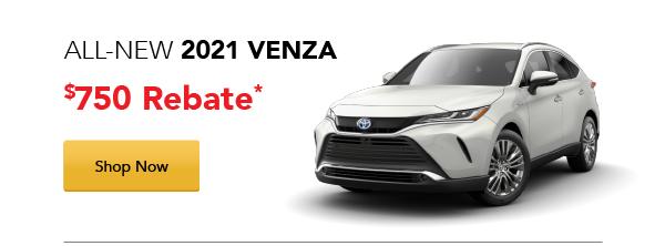 2021 Venza